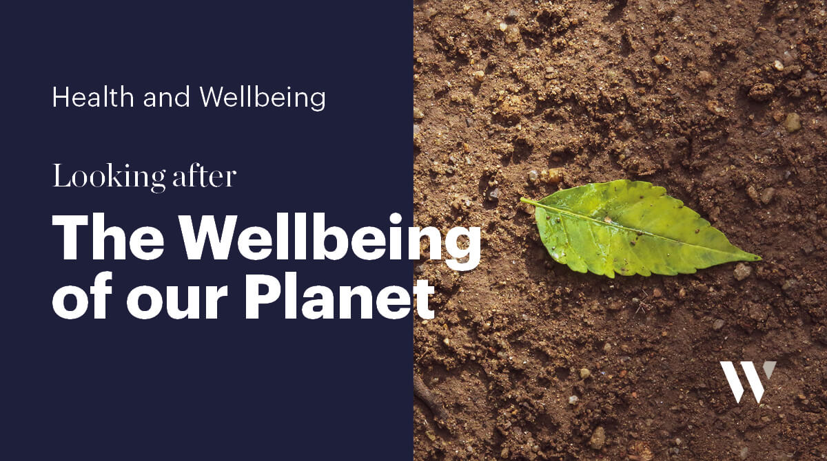 The Wellbeing of our Planet